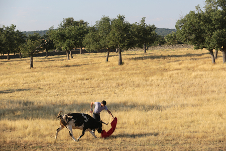 In the countryside of Spain, young men still dream of becoming a famous Matador.