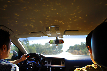The bullfighter's Suit of Lights, driving through olive groves of Jaen, on the way to a bullfight.