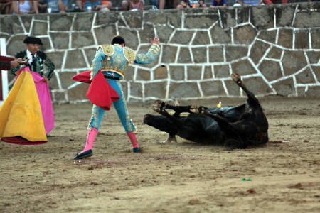After the final sword thrust, the bull goes down. The bullfighter acknowledges his fighting spirit.