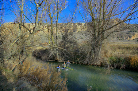 Wildlife park agents harvest trout eggs to re-stock other streams and rivers. Castilla y Leon, Spain.
