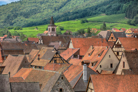 Riquewihr, France. This historic village in the Alsace region of France has become a major tourist destination. Both for its well preserved medieval architecture, as well as a major producer of world famous wines.
